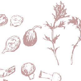 野菜 雑誌 カット