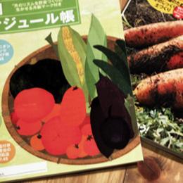 野菜だより201411