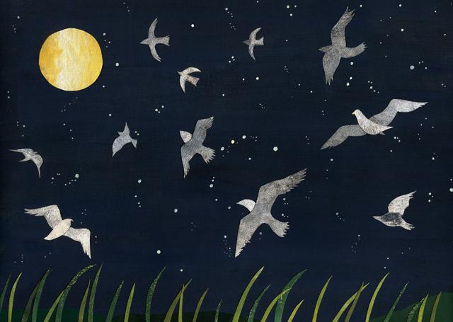 月夜、鳥が飛ぶ 手紙舎さん