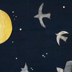 月夜、鳥が飛ぶ