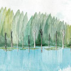 水辺の樹々